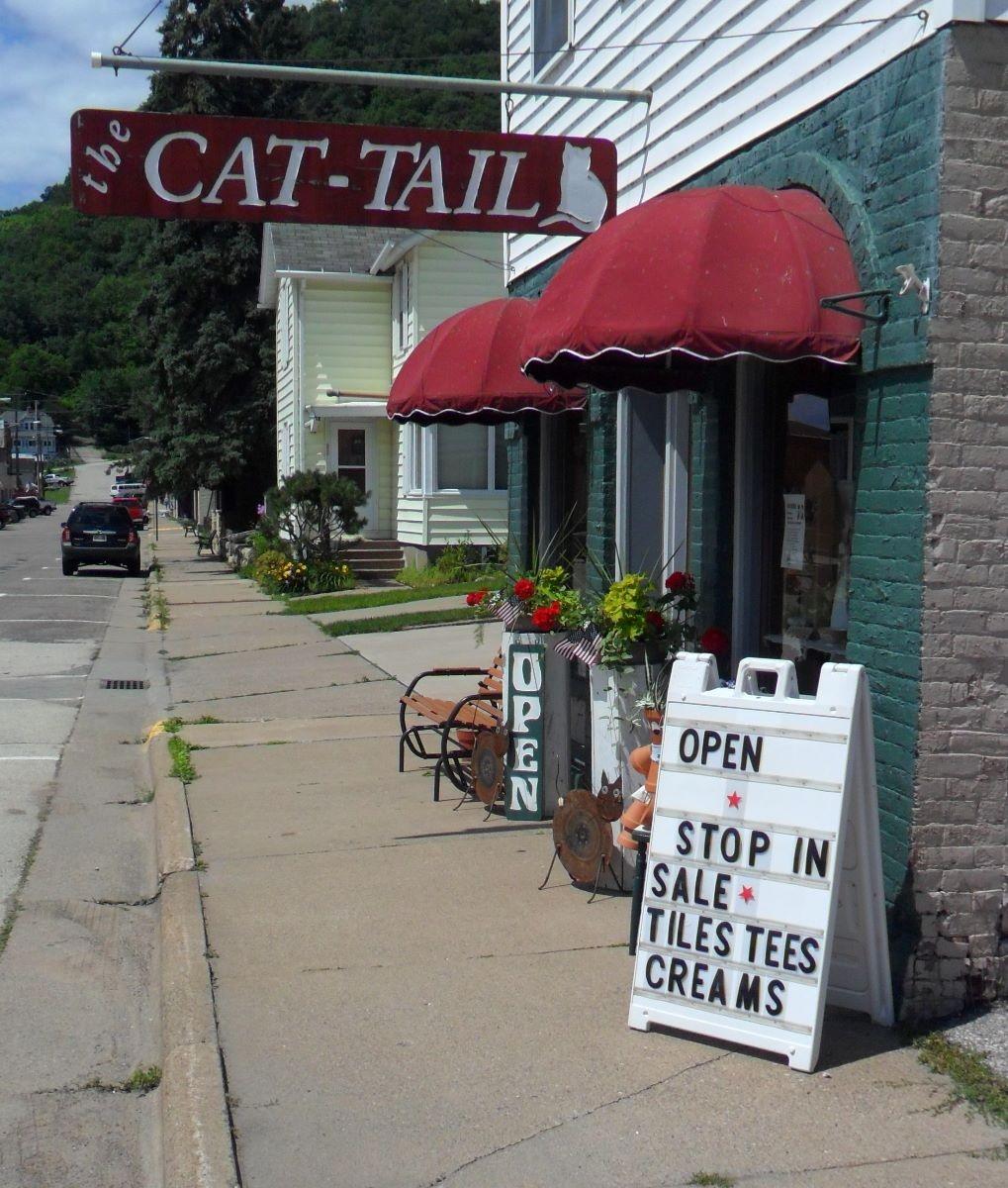 The-Cat-Tail.jpg