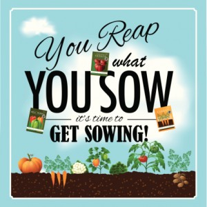 You reap what you sow design